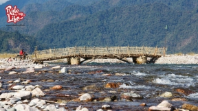 temporary-bamboo-bridge