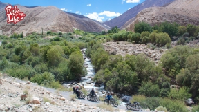 streams-add-greenery-to-the-stark-ladakhi-landscape